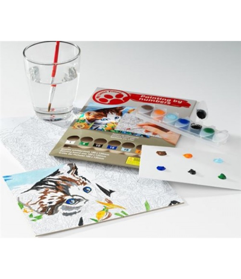 Toykits My Little Friend Painting By Numbers 96 stuks